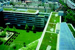 Dachbegrünung des technischen Rathauses in München